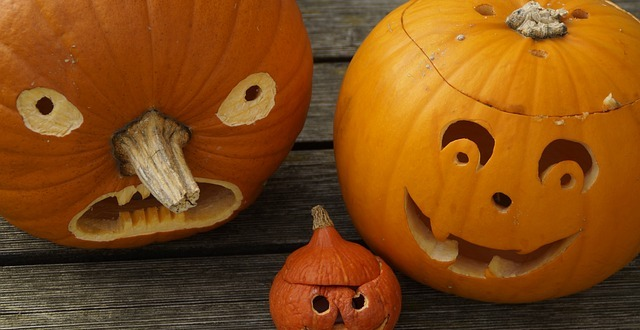 5 Ways to Keep Your Kids Safe this Halloween - Radaris